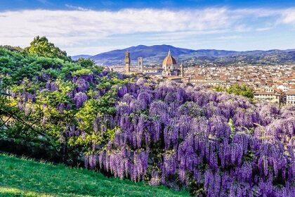Необычные места во Флоренции